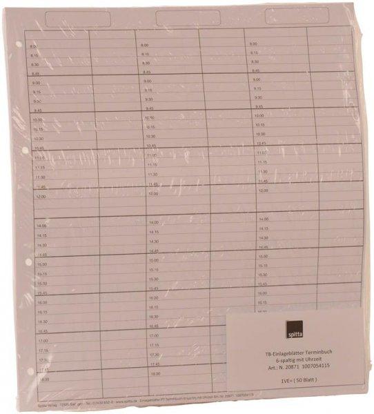 Einlageblätter 6-spaltig mit Pause - Packung 50 Blatt von Spitta Verlag