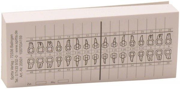 Zahnschema SK - Block 100 Blatt von Spitta Verlag