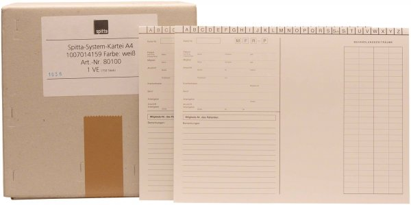 System Karteikarten A4 - Karton 150 Karten von Spitta Verlag